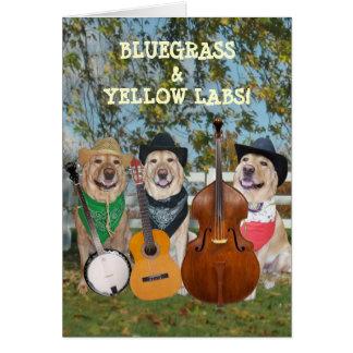 Countrymusik & labbanpassadefödelsedag hälsningskort