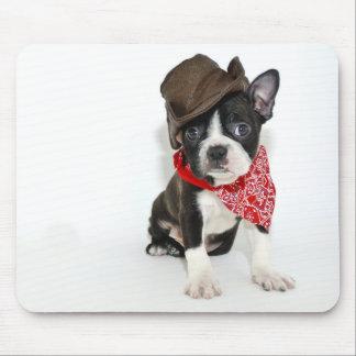 Cowboy Boston Musmatta