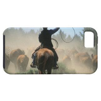 Cowboy på häst med lassoen som kör nötkreatur iPhone 5 Case-Mate fodral