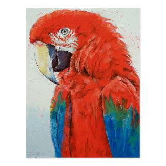 Crimson Macawvykort Vykort