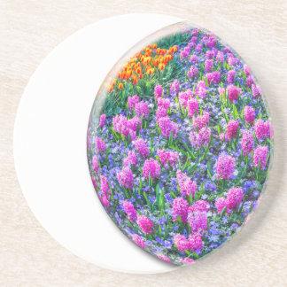Crystal sphere med rosa hyacint på vit underlägg sandsten