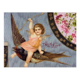 Cupid på ett svalavalentineskort vykort