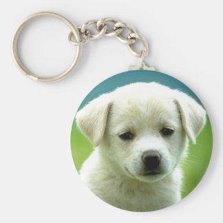 cute-puppy-dog-wallpapers.jpg rund nyckelring