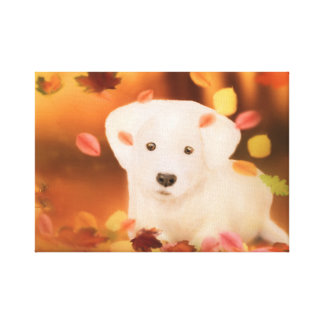 Cute white dog 35.56x27.94cm, 3.81cm, Simple Canvastryck