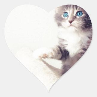 Cutie kattungar hjärtformat klistermärke