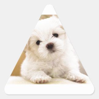 Cutie pajvalp triangelformat klistermärke