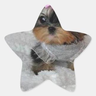 cutie pie.jpg stjärnformat klistermärke