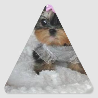 cutie pie.jpg triangelformat klistermärke