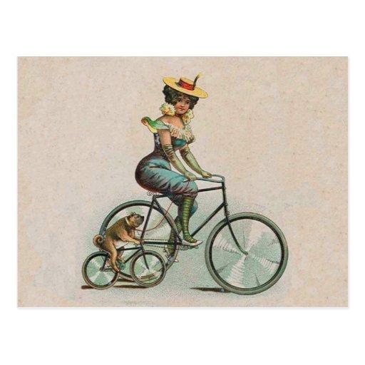Cykel för hund för vintageVictoriandam Vykort