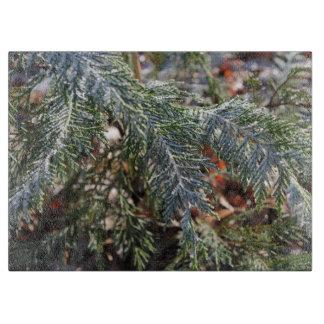 Cypress frost