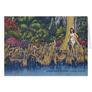 Cypress knä hälsningskort