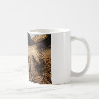 Cypress rotar kaffemugg