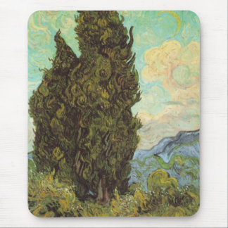 Cypresses Musmatta