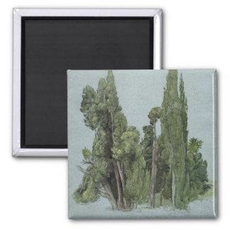 Cypressesna på villad'Esten, Tivoli (w/c & G Magnet