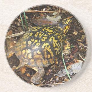 CZ boxas sköldpaddaunderlägg Underlägg