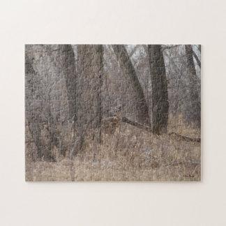 D0002 Vit-tailed hjort Jigsaw Puzzles