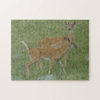 D0006 Vit-tailed hjort Jigsaw Puzzle