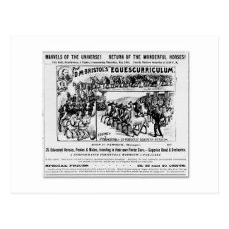 D.M. Bristol Equescurriculum annons Vykort