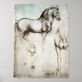 Da Vinci hästaffisch Poster