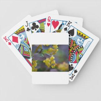 Däckkort Spelkort