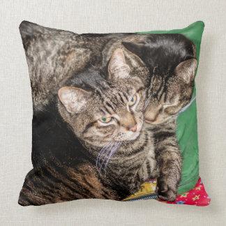 Dagliga katter - - helgdagar - jul kudde