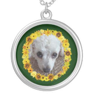 Daisy för hund för vittekopppudel silverpläterat halsband