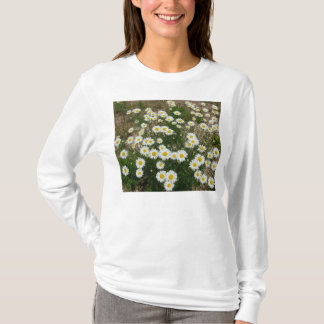 Daisy T Shirt