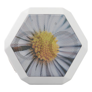 daisy vit bluetooth högtalare
