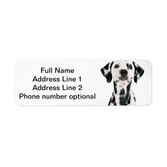 Dalmatian adressklistermärke returadress etikett