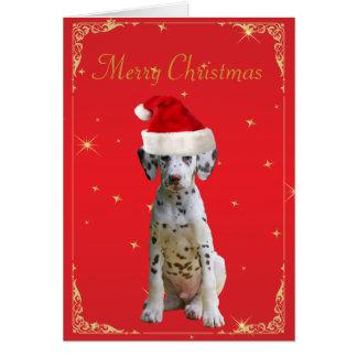 Dalmatian hund i kort för jul för santa
