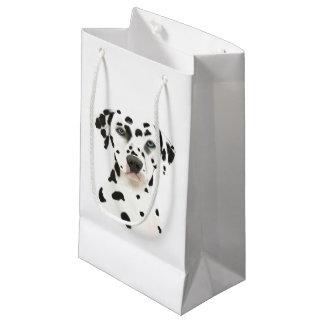 Dalmatian hundkonst