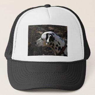 Dalmation hund Portriate Keps