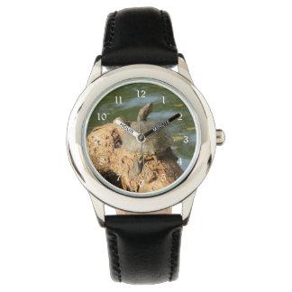 Dammsköldpadda Armbandsur