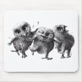 Dancing and singing Owls Musmatta