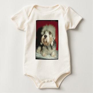 Dandie Dinmont Terrier Sparkdräkt