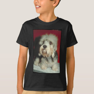 Dandie Dinmont Terrier Tshirts