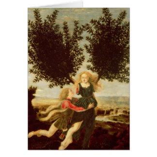 Daphne och Apollo, c.1470-80 Hälsningskort