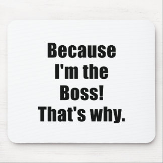 Därför att Im chefen som är varför Musmatta