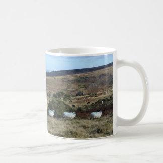 Dartmoor får vit mugg