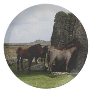 Dartmoor ponnyer på benbackestenar tallrik