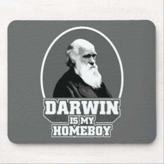 Darwin är min Homeboy Musmatta