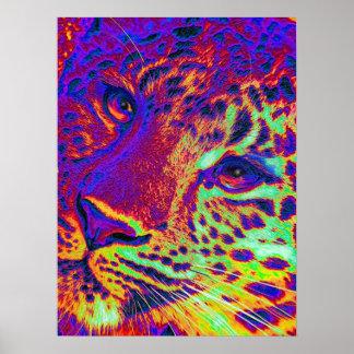 dayglowleopard poster