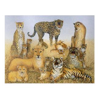 De stora katterna vykort