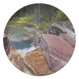 Deadwoodnedgångar på Reynolds bäck i höst in Tallrik