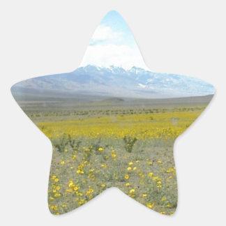 Death Valley i blom Stjärnformat Klistermärke