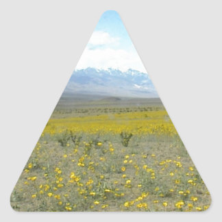 Death Valley i blom Triangelformat Klistermärke