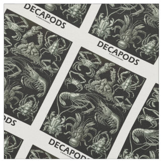 Decapods Ernest Haeckel Artforms av naturen
