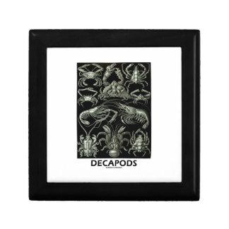 Decapods Ernest Haeckel Artforms av naturen Liten Presentask