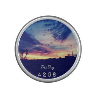 DeeDog 4206 Bluetooth högtalare