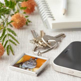 Degu anseende på koppen fotograferar fyrkantig silverfärgad nyckelring